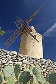 Moulin à vent et Cactus Opuntia (Opuntia sp), Saint-Saturnin-lès-Apt, Vaucluse, France
