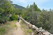 Hiking on the heritage trail of Monaccia d'Aullène, Corsica, France