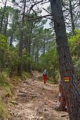 Hike on the GRP Mare a Mare Sud towards the Ospedale Lake, Corsica, France