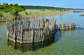iSimangaliso Wetlands Park. This park, 3 300km² wide, is protecting various lakes where the local fishermen have developped some fish traps to capture fish. Santa Lucia. Kwazulu Natal. South Africa.