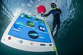 Diver / snorkeler discovering the Yıldızkoy bay underwater trail in the Marine Protected Area of Gokceada Island, Turkey