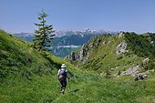 Hiking to the Bois du Gey, Chat Sauvage biotope, Aspe Valley, Pyrenees, France