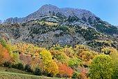 Peña Blanca: Tena Valley, Ordesa-Vignemale Biosphere Reserve, Aragonese Pyrenees, Spain