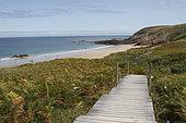 Path arranged to access the beach of Lourtuais, Brittany, France