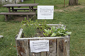 Tray with food to share in the commune of Rohan, Brittany, France