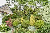 Jardin privé de Roscanvel, Péninsule de Crozon, Finistère, France