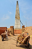 Brick factory where families are making bricks with clay before drying them under the sun and in oven using straws. There is about 25 millions people (men, women, kids) working in the 100 000 bricks factories in India. Rajasthan. India