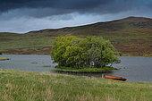Cam Loch, Scotland