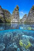 Coral reef alongside the steep rock faces of the Misool archipelago, Raja Ampat, Indonesia