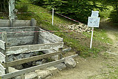 Rehabilitation of an old wolf trap !! Mandailles Valley, Cantal Mountains, Auvergne Volcanoes Regional Natural Park, Auvergne, France