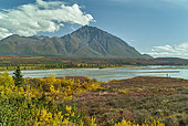 Susitna river. Denali Highway: Paxson to Cantwell, Alaska