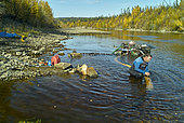 Individual gold prospecting with modern means on the Fortymile river, Taylor highway, from Tetlin junction to Eagle city in autumn, Alaska