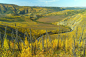 Taylor highway, from Tetlin junction to Eagle city in autumn, Alaska