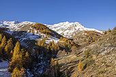 Pas de Roya and the summit of Mont Rougnous (2673m), Roya valley, Tinée valley, Mercantour National Park, Alpes-Maritimes, France
