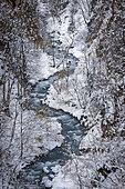 Snow-covered banks of the La Tinée river, Tinée valley, Mercantour National Park, Alpes-Maritimes, France