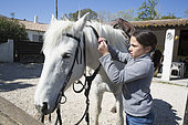 Léa, 8, takes care of removing the bridle on her mare called Brume after a ride, Saintes-maries-de-la-mer, Camargue, France