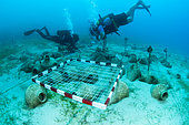 Fictional site of underwater archaeological excavations, in the protected marine area of Kas Kekova, Turkey.
