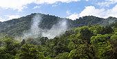 Panoramic view of the El Triunfo Biosphere Reserve, Chiapas, Mexico