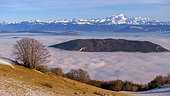 Sea of cloud between the Jura and the Northern Alps, in the foreground, the Mont des Princes anticline, in the background, the Mont Blanc massif, seen from the Grand Colombier massif, Bugey, Ain, France