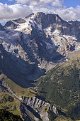 Massif de la Meije, seen from Goléon, north of La Grave, Ecrins National Park, Alps, France