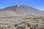 Teide volcano, Tenerife island, Canary Island