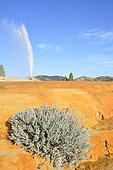 Geyser, Soda Spring, Idaho, USA