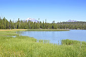 Elk Lake and Mount Bachelor, Oregon, USA