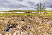 Lake landscape, Finland