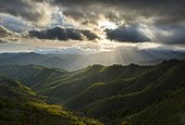 Rays of light on the forests in the Apennines after a storm, Foreste Casentinesi National Park, Emilia Romagna, Tuscany, Italy, Europe