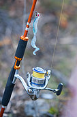 Fishing with artificial lure, Fishing rod with reel equipped for predator fishing, Doubs, Franche-Comté, France