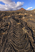 Recent corded lavas on the island of El Herrio, in the Canaries. Pahoehoe type basalts (fluids) - El Lajial - Restinga region - El Herrio is a recent volcanic island and part of the network of European Geoparks - Canary Islands