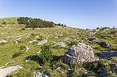 Enclosure, terraces and borie of the Col du Clapier or the Dead Woman, Caussols, Préalpes d'Azur Regional Natural Park, Alpes-Maritimes, France