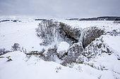 The Déroc waterfall, Aubrac Regional Natural Park, Lozère, France
