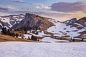 Le Pas des Bachassons, Trièves, Hauts Plateaux du Vercors national nature reserve, Vercors regional natural park, Isère, France