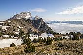 Le Grand Veymont (2341m), Le Trièves, Hauts Plateaux du Vercors national nature reserve, Vercors regional natural park, Isère, France