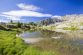 The Jumeaux lakes (2230m), in the background Mont Bégo (2872m), Fontanalba valley where thousands of protohistoric engravings have been repeated, Roya and Bevera, Casterino, Mercantour National Park, Alpes-Maritimes, France