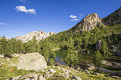 Fontanalba Green Lake (2145m), Fontanalba valley where thousands of protohistoric engravings have been listed, Roya and Bevera, Casterino, Mercantour National Park, Alpes-Maritimes, France