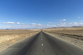Route qui mène au Parc national Hustai, où le Cheval de Przewalski (Equus caballus przewalskii ou Equus ferus przewalskii), a été relâché à partir de 1993 dans le parc national de Khustain Nuruu, Partie centrale, Mongolie