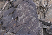 Valley of rock carvings, rocks with rock carvings, dated between - 8000 and - 3000 years old, Altai mountains, West Mongolia, Mongolia