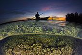 Femme en pirogue au-dessus d'un récif de corail au coucher du soleil, Baie de Balgai, Nouvelle-Irlande, Papouasie-Nouvelle-Guinée