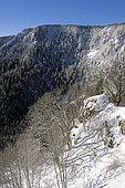 Glacial cirque, Col de la Schlucht, winter, snow, Hautes Vosges, Haut Rhin, France