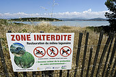 Panel Prohibit Zone Restoration of the lagoon environment, Posidonia, barrier, view of Embiez Island, Sanary Bay; Ile du Gaou, Le Brusc, Six Fours les Plages, Var, France