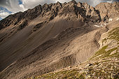 Remains of an ancient glacier in the Ecrins massif, result of global warming, Alps, France