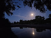 Moonset on the Loire River in the region of Pouilly-sur-Loire, Loire Valley, France