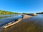 Kayak for naturalist observation on the Loire between La Charité and Cosne sur Loire, Loire Valley, France
