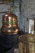 Still for the traditional distillation of kirsch, carboy, Ecomuseum of the Cherry Country, Fougerolles Saint Valbert, Haute Saone, France