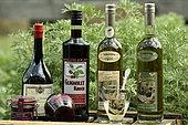 Bottles, Kirsch de Fougerolles AOC, absinthe, Morello cherry, Guignolet kirsch, Secret garden of the Green Fairy, Paul Devoille distillery, Fougerolles Saint Valbert, Haute Saone, France