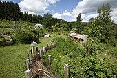Garden Une Figue dans un Poirier, participative operation, permaculture, Girmont, Girmont-Val d'Ajol, Vosges, France