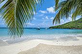 Plage de l'anse Marcel. Île de Saint-Martin, Antilles françaises