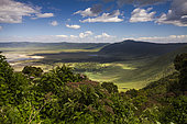 View of Ngorongoro crater from the crater rim, Ngorongoro Conservation Area, Tanzania.